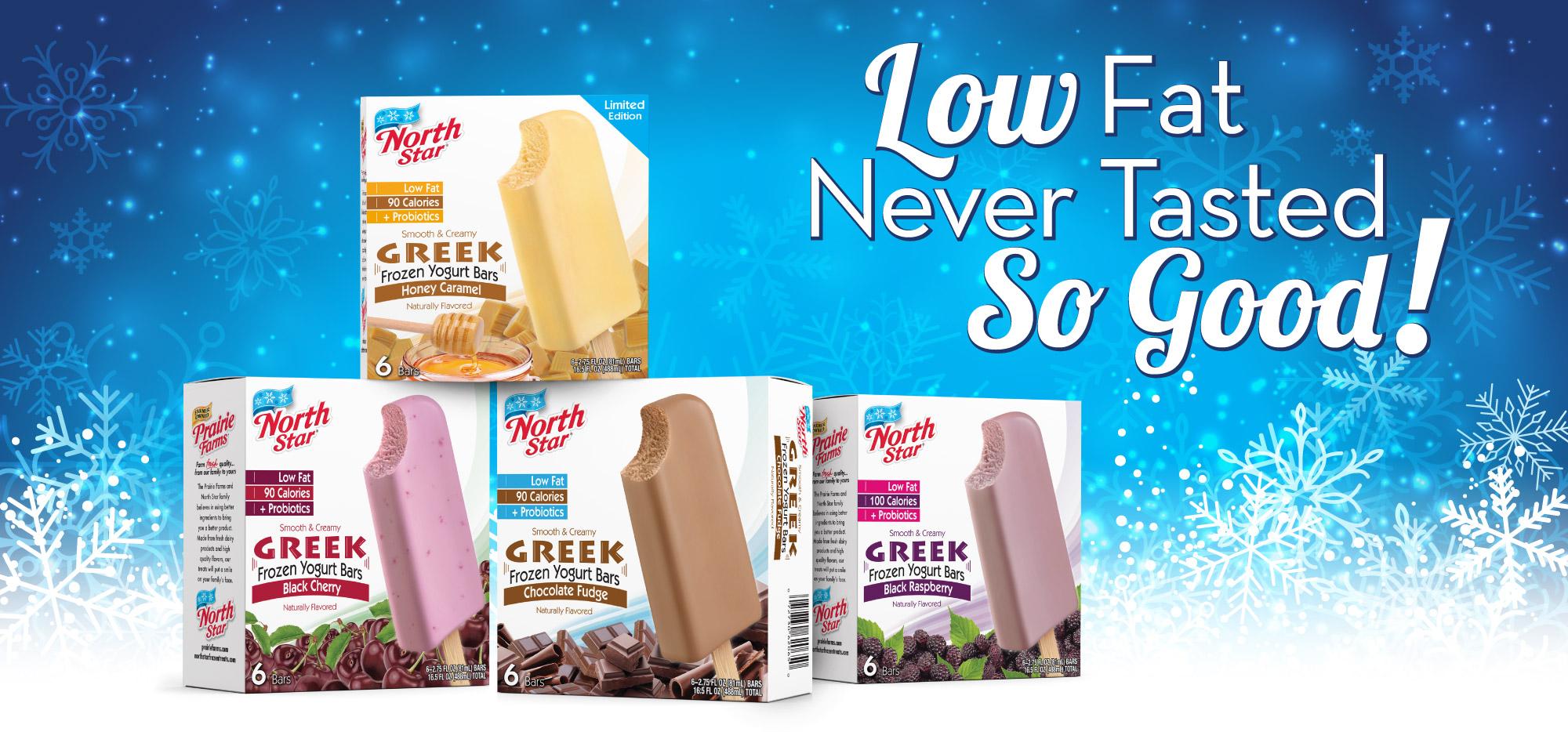 Low Fat Greek Yogurt Bars